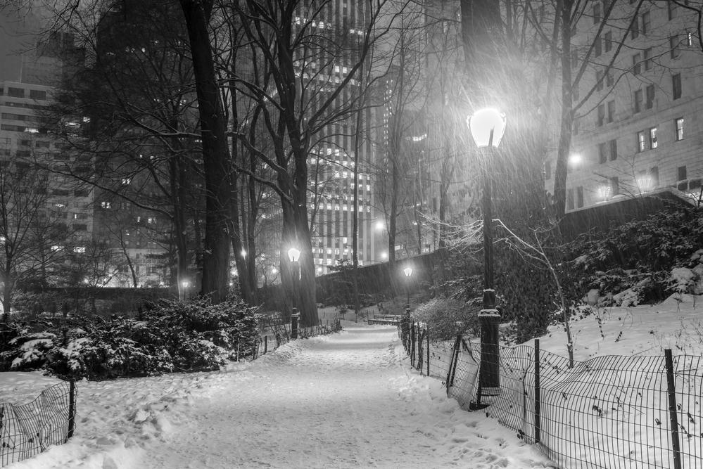 Snow in Central Park | Image via Deposit Photos