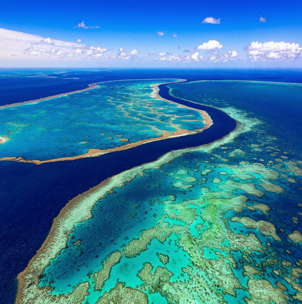 Great Barrier Reef | @tscharke (Instagram)