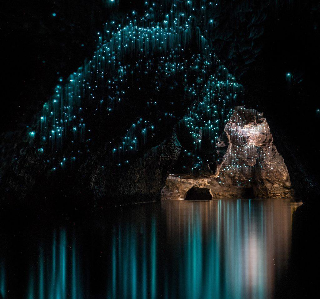 Waitomo Glow Worm Caves | Image by Shaun Jeffers